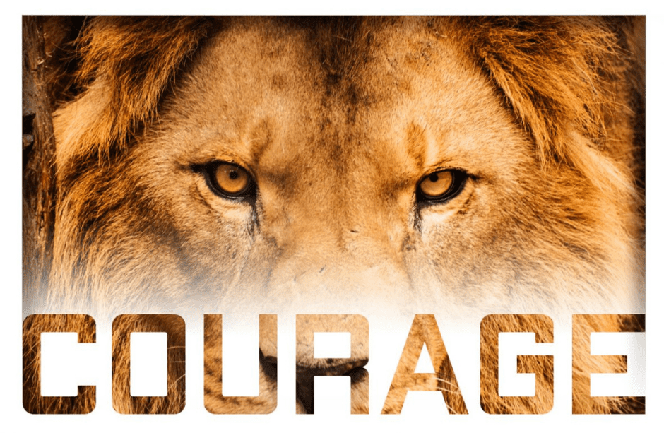 How Do We Find the Courage to be Vulnerable, to be Brave, to Dare Greatly?